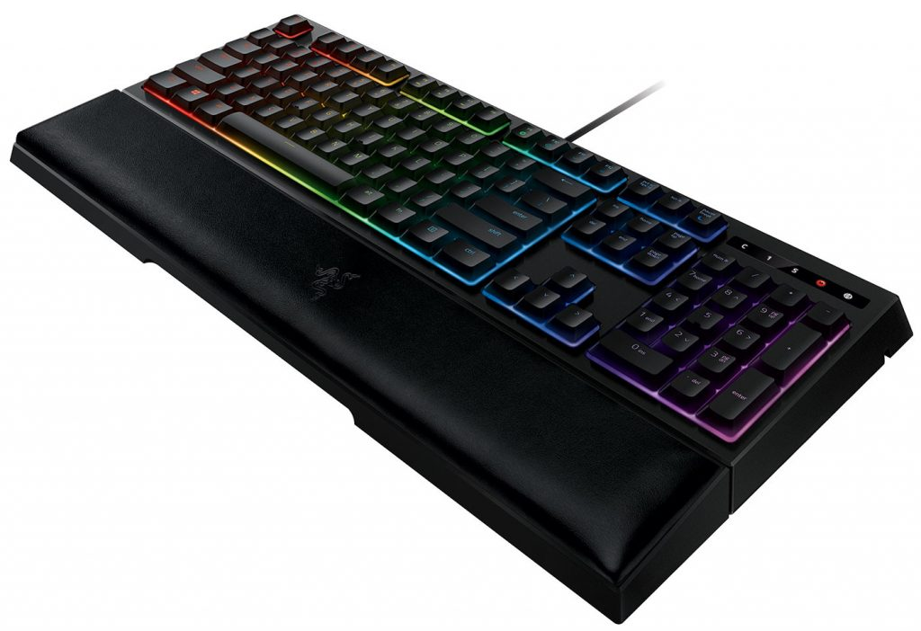 Ornata Chroma 1